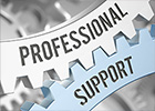 Professional Support Master Classes